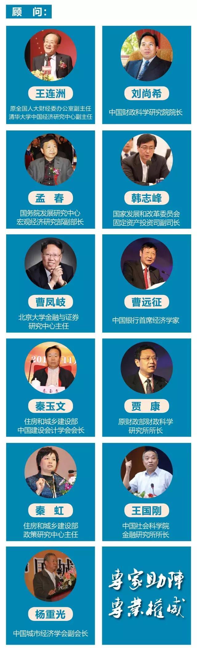 2017城投蓝皮书_中国城投行业发展报告_顾问