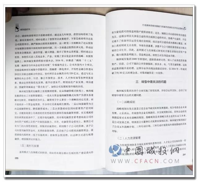 2017城投蓝皮书_中国城投行业发展报告_书摘